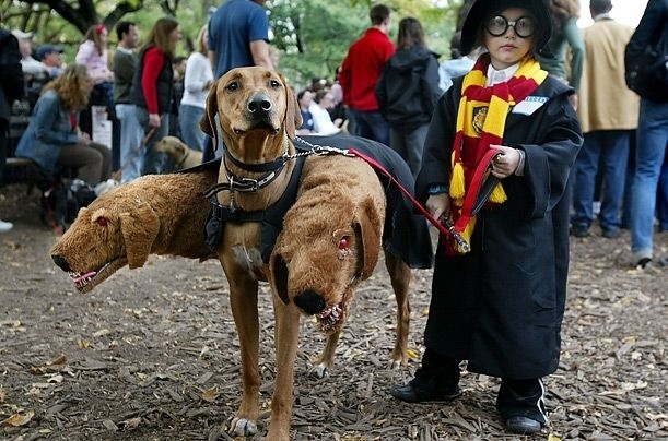 Harry-Potter-e-o-Cerbero