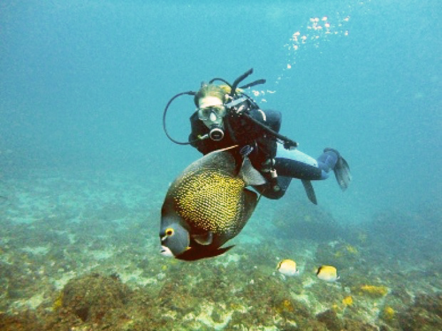 IMG 4: Mergulho em Arraial do Cabo